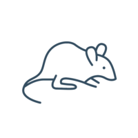 Mouse and Rat Feed & Supplies